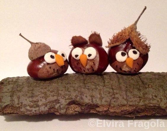 Binnenkort vallen de kastanjes, eikels en beukennootjes weer van de bomen... Leuke knutselideetje voor kids! - Zelfmaak ideetjes