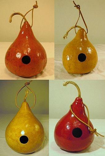More gourd birdhouses for wrens.