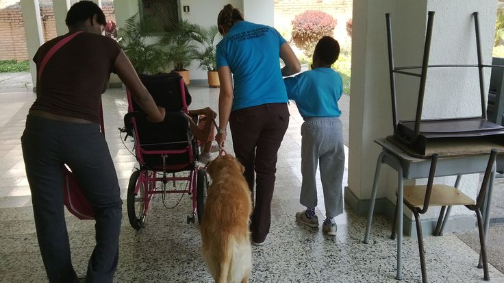 Centro de Actividades y Terapias asistidas con animales, Cali, Colombia