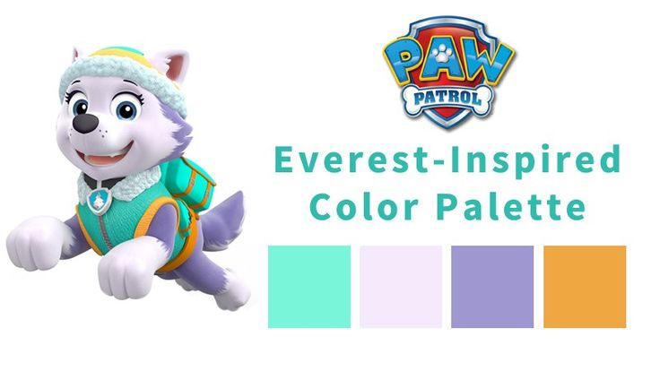 Girls' Winter Birthday Color Themes - Everest from Paw Patrol