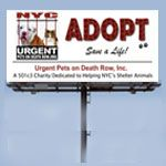Urgent was created for one reason - to spread the word about the travesties that occur every day at the NYC ACC and save as many animals as we can. Not enough people know what is happening right under our noses. Our goal is simple - to pressure the powers that be to make change. We need YOU to help us accomplish that. Please help spread awareness and advocate for change! And, pleased Donate to the Urgent General Awareness Fund