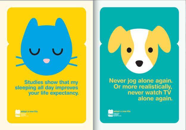 Wonderful pet adoption ads