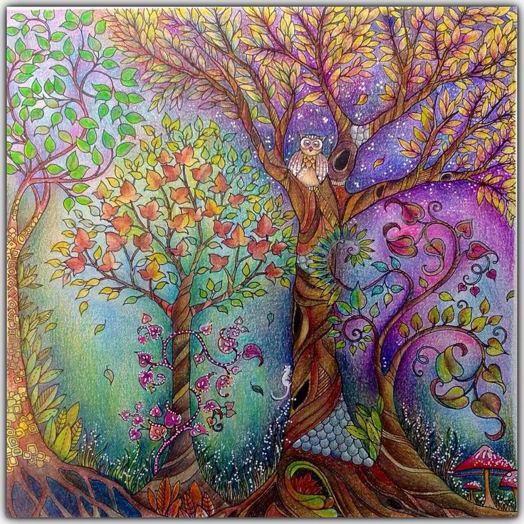 Best 25 Enchanted Tree Ideas On Pinterest