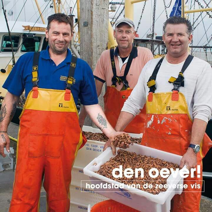 Hollandse garnalen.