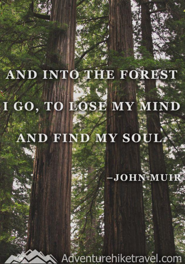 John Muir Quotes Hiking Quotes Adventure Quotes Wanderlust Quotes