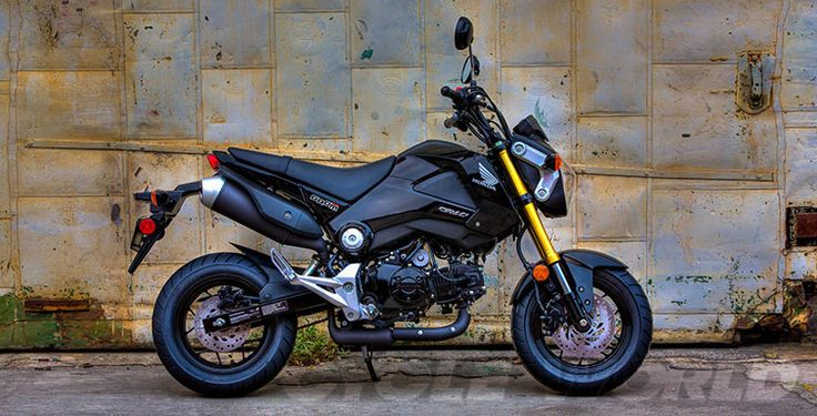 2014 Honda Grom 125- First Look Review- Photos- Video- Specs