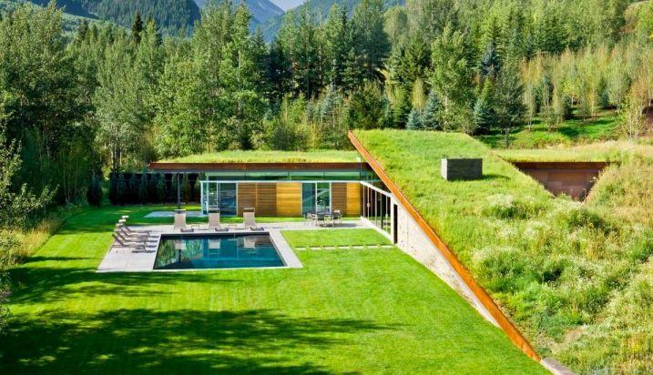 Cette maison contemporaine avec toiture végétalisée s'intègre parfaitement dans un environnement naturel et boisé et dans le paysage environnant.