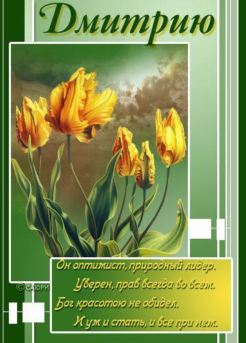 Дмитрий открытки, картинками
