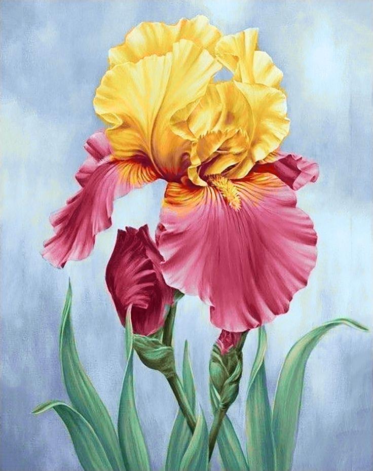 Картинки цветок красивые рисунок