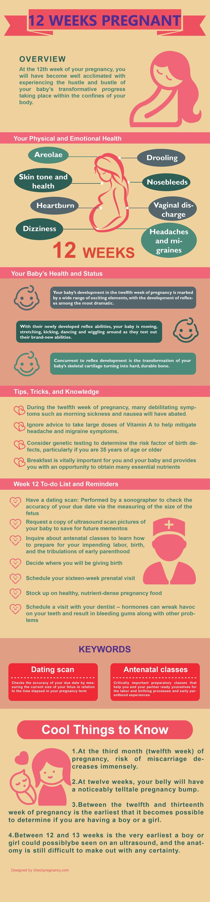 Tips for 12 weeks pregnant ~ !