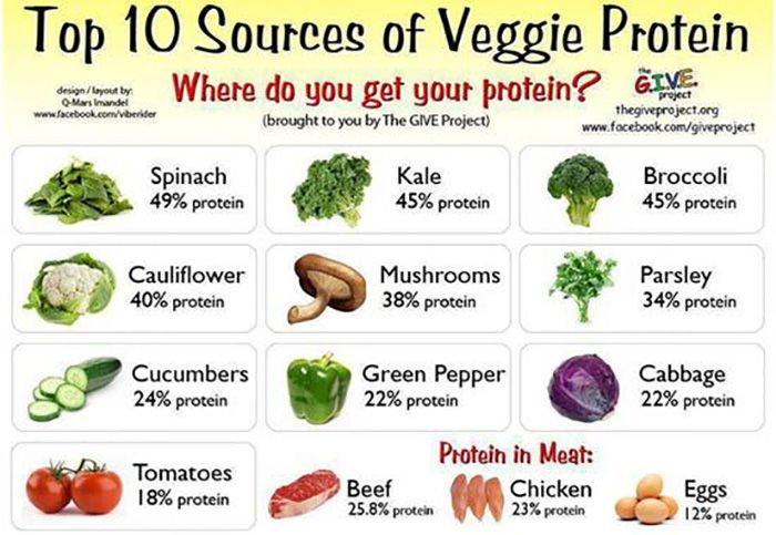 Finally here is the ultimate list of high-protein foods for you to check out. Protein rich foods are important nutrient components that are made of essential and non-essential amino acids which provide energy to the body.