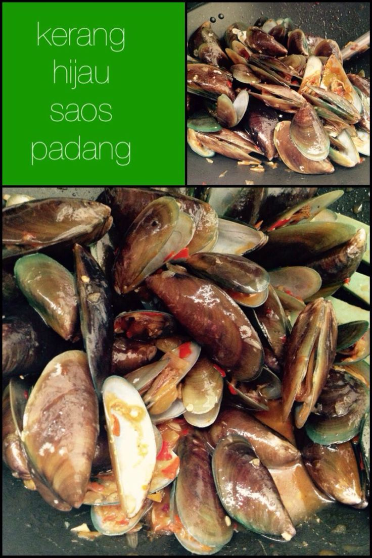 Kerang Hijau Saos Padang  Send me your request for the recipe.