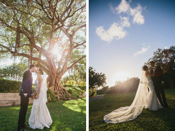 32 Best Weddings At Fairchild Images On Pinterest