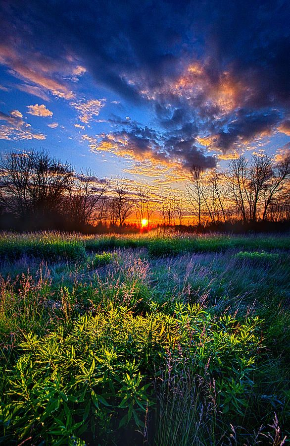 Almost A Whisper Photograph by Phil Koch - Almost A Whisper Fine Art Prints and Posters for Sale
