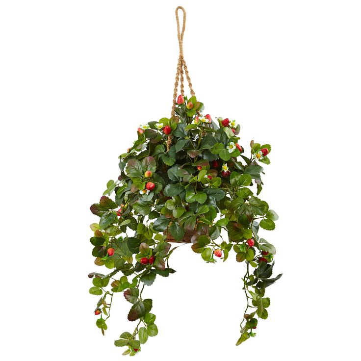 Strawberry Bush in Hanging Basket: Bring the feeling of summer indoors all year round with this faux hanging strawberry bush in a beautiful…