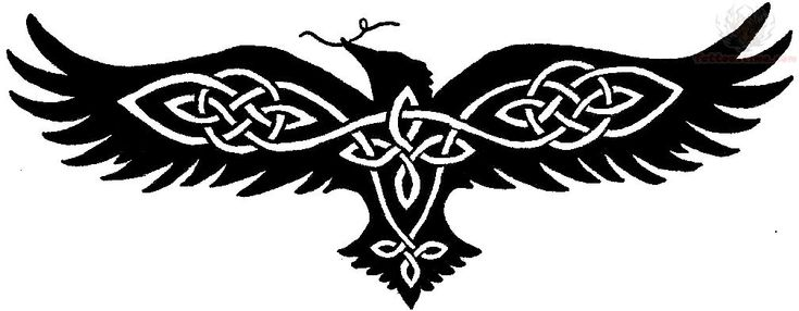 Celtic Knot Raven Tattoo.  This one might work if I want something Irish in it too.