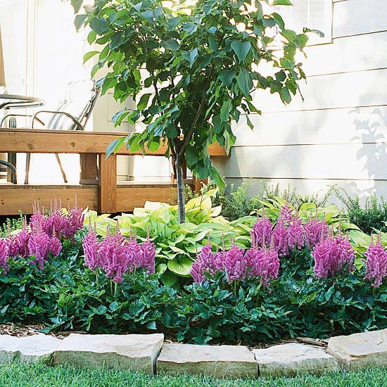 A traditional deck turns into something stellar with the addition of a Japanese tree lilac (which will provide sweet perfume in early summer) and a collection of shade-loving hostas and astilbes.