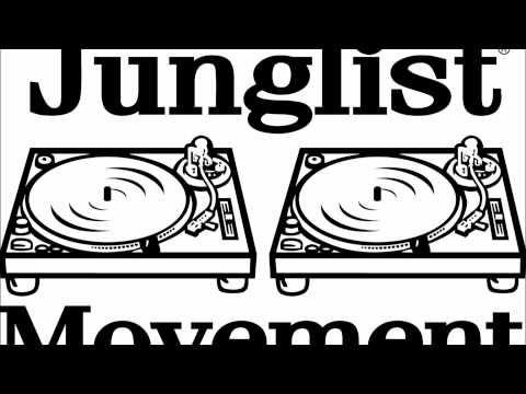 Love Hype and sub bass <3 #Jungle {DJ HYPE oldskool jungle}