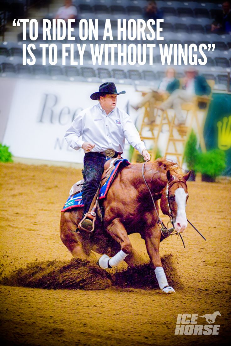 Saddle Star. One of the reining industry's leading riders, Tom McCutcheon's impressive achievements include an NRBC Open Championship, two National Reining Horse Association Derby Reserve Championships, the Tradition Open Futurity, the SWRHA Open Futurity, and finalist status at every major NRHA event.