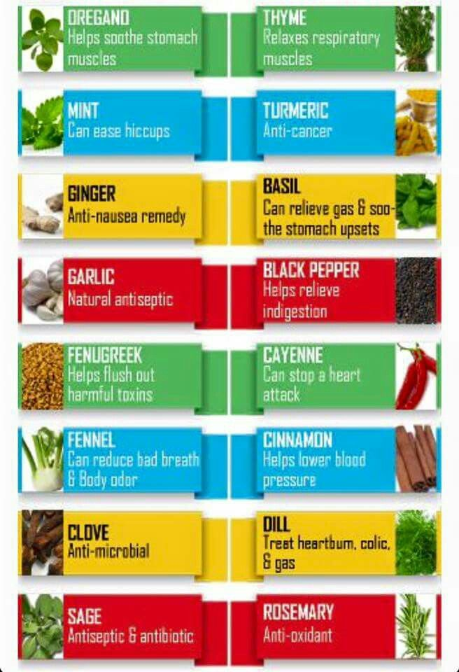 Powerful Herbs: See the Benefits and Learn How to Grow them at Home
