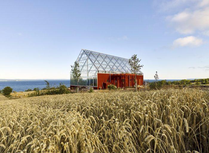 Cette maison produit plus d'aliments que de déchets ! La cohabitation hommes/plantes, ça marche !
