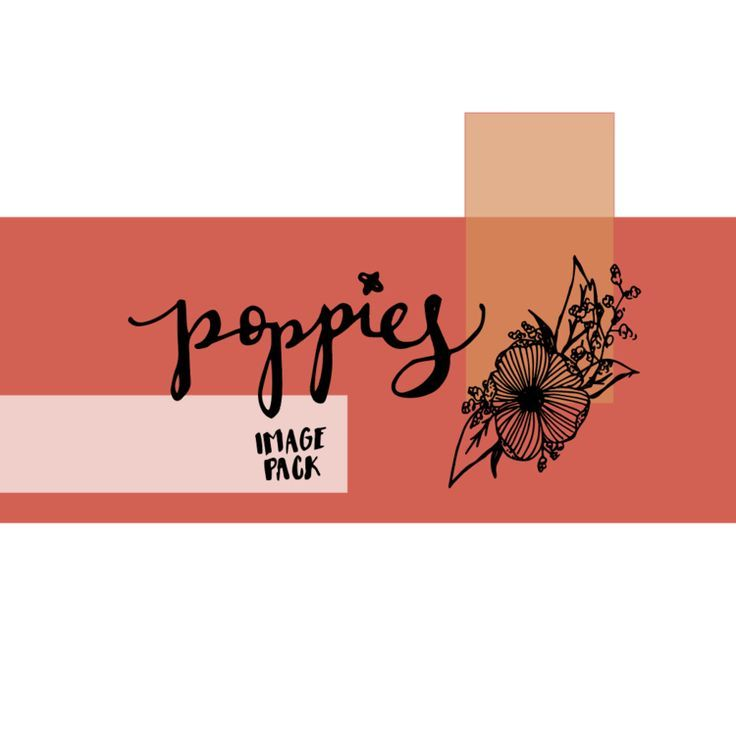 Hey babe, Are you looking for the perfect vector graphics for your social media graphics, website or blog posts? We've recently added the Poppies Image Pack to our shop. This pack features a variety of high quality Poppies images and hand-lettered words. Take a look at our NEW image pack by clicking this link - http://www.thehigginscreative.com/shop/poppies-vector-pack-with-bonus-logo-template #waketomake