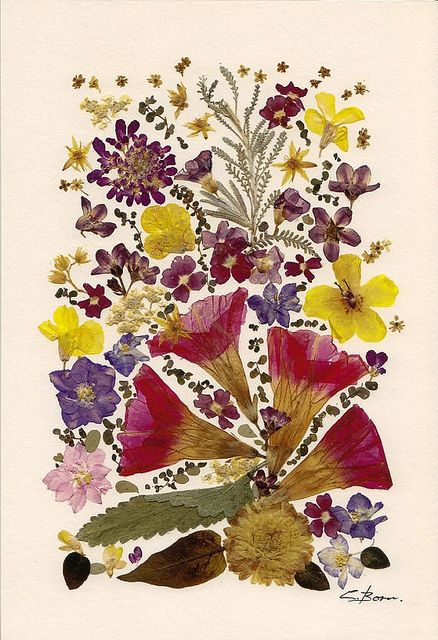 Pressed Flowers Print by all things paper