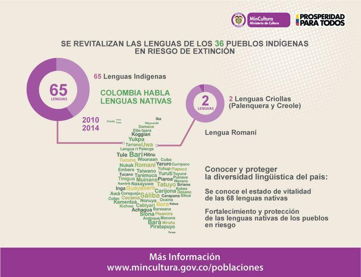 Diseño Infografía (2014): Se revitalizan las lenguas de los 36 Pueblos Indígenas en riesgo de extinción. 65 Lenguas Indígenas / 2 Lenguas Criollas (Palenquera y Creole) / Lengua Romaní