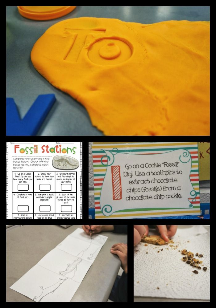 These Fossil Stations are the most fun your students will have in science all year!  Go on a chocolate chip dig, identify pictures, make fossils out of play-dough, and more!