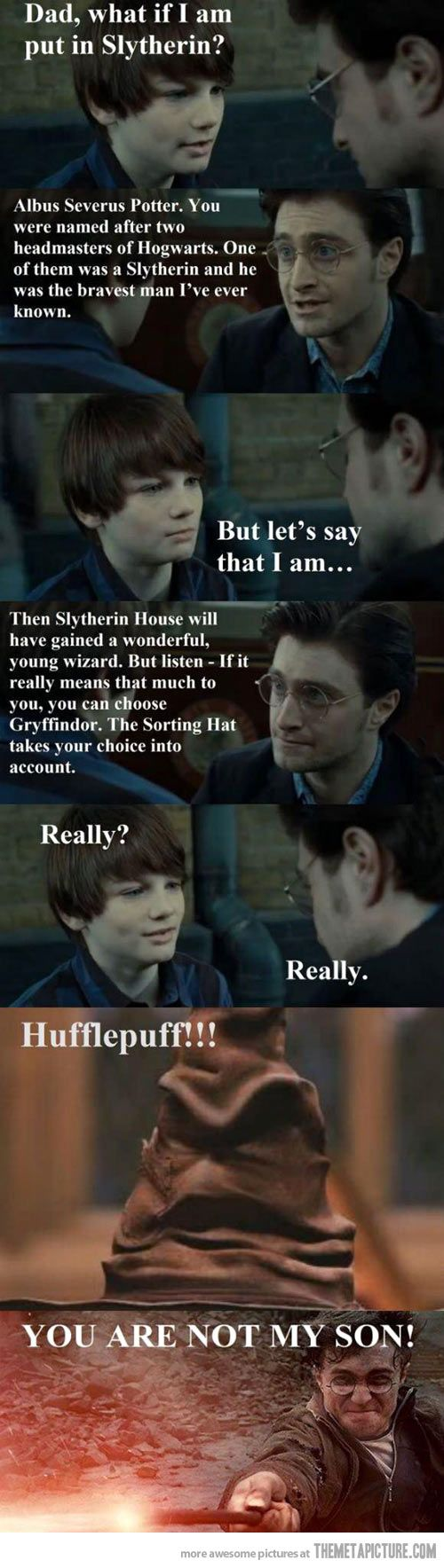 Albus Severus Potter into Hufflepuff... daddy Harry doesn't approve.