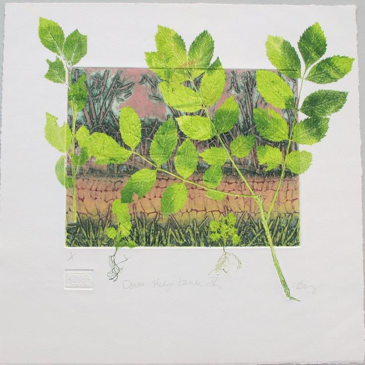 Collagraph mono print. Paper size 15 inches x 15 inches