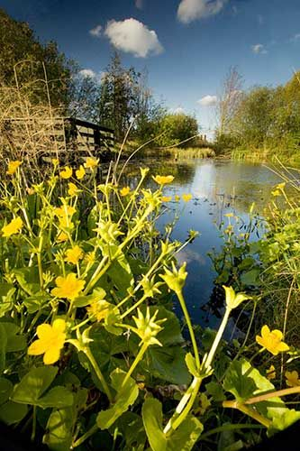 London's 11 Hidden Quiet Spots #refinery29  http://www.refinery29.com/relaxing-spots#slide10  London Wetland Centre  Can you believe this picture depicts a place that is only 10 minutes away from Hammersmith? But, the London Wetland Centre is that close — nestled in Barnes, but still so near to the heart of the city. This conservation area is teaming with wildlife and flora and fauna. If you can't quite bring yourself to escape to the actual countryside on the weekend, this bucolic spot ...