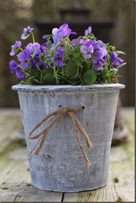 Ein schöner Blumentopf mit Schlaufe.