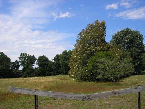 Thomas Rolfe (1615 - 1680) - Find A Grave Photos. Kippax Planation, Hopewell, VA.