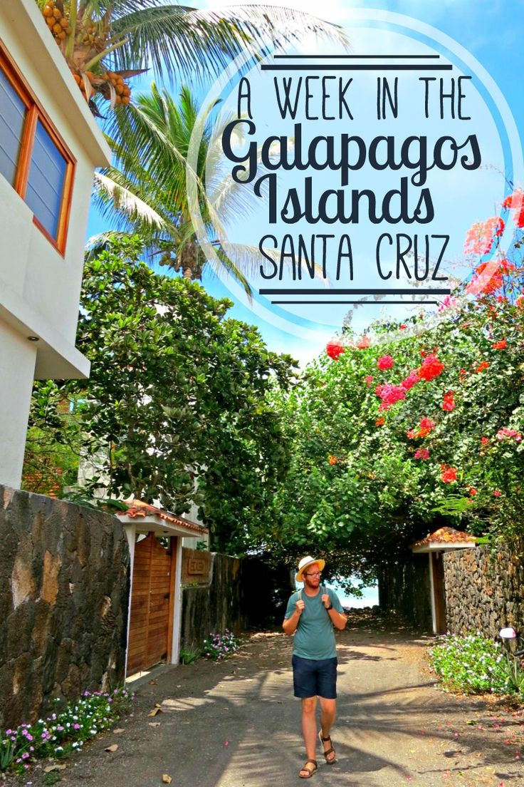A week in the Galapagos Islands by land - no cruise necessary! Read about our…