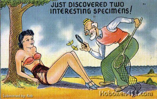 Saucy seaside postcards