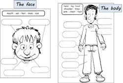 The body - exercices | Apprendre l'anglais, Anglais ce1 et Anglais ce2