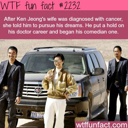 Ken Jeong's Career - WTF Facts : funny, interesting & weird facts