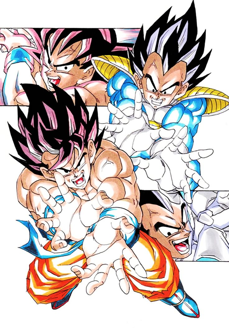 Goku and Vegeta!