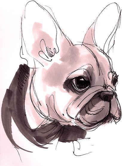Google-Ergebnis für http://www.deviantart.com/download/150230071/French_Bulldog_Pup_by_beavotron.jpg