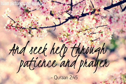 Qur'an Al-Baqarah (The Cow) 2:45: And seek help through patience and prayer, and indeed, it is difficult except for the humbly submissive [to Allah ]