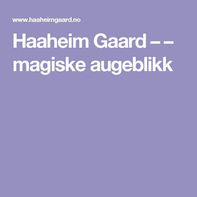 Haaheim Gaard – – magiske augeblikk