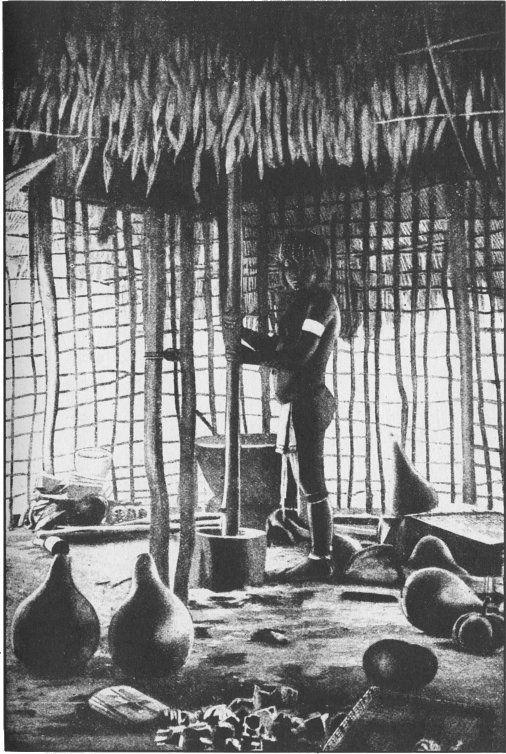 Los arquitectos nativos de la Guayana Británica prestan poca atención a la privacidad como al saneamiento y la higiene. Las paredes equivalen a nada más que el trabajo en celosía de malla más ancha y las ventanas son superfluas. Todo lo que pide el ama de casa es una suficiencia de utensilios de madera o calabazas, cestas que ella misma teje, y un mortero de madera pesada en el que, con un palo de mazo, puede arrojar fruta y grano. libro El museo secreto de la humanidad, 1935