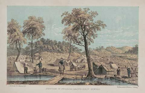 National Museum of Australia - Gold and government - explores how places where gold rushes occurred changed society.
