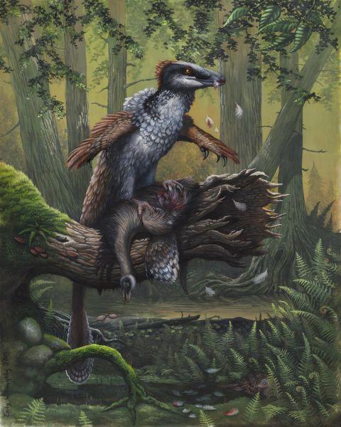 Дакотараптор (Dakotaraptor steini) — крупный дромеозаврид, обнаруженный в 2005 году в маастрихтском формировании Хелл-Крик в Южной Дакоте ( поздний меловой
