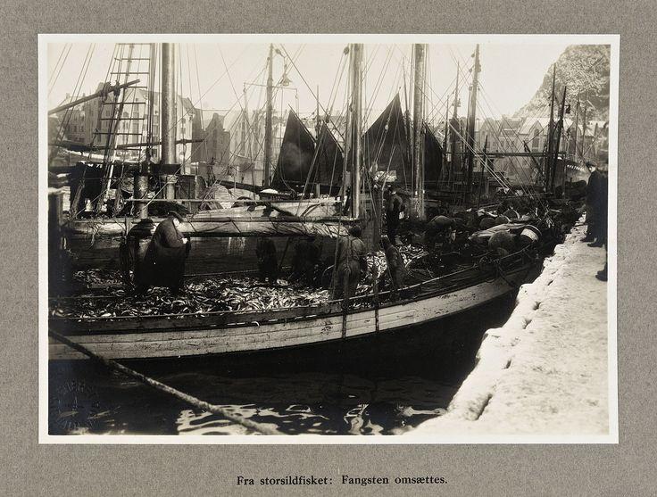 From Wikiwand: «Fra storsildfisket: Fangsten omsættes», Ålesund 1920Foto: Sigvald Moa/Nasjonalbiblioteket