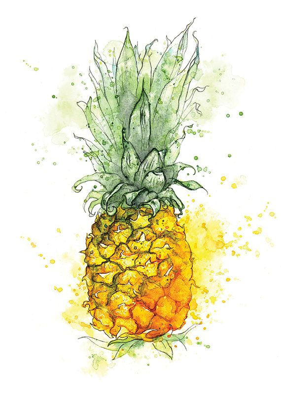 Pineapple Watercolour Painting by Amy Holliday