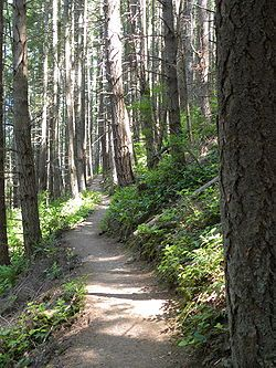 Pacific Northwest Trail- 1200 mile trail running from the Continental Divide in Montana (connecting it with the Continental Divide Trail), through the northern panhandle of Idaho, to the Pacific coast of Washington's Olympic Peninsula. It traverses the Rocky Mountains, Selkirk Mountains, Pasayten Wilderness, North Cascades, Olympic Mountains, and Wilderness Coast. The trail crosses three National Parks and seven National Forests.
