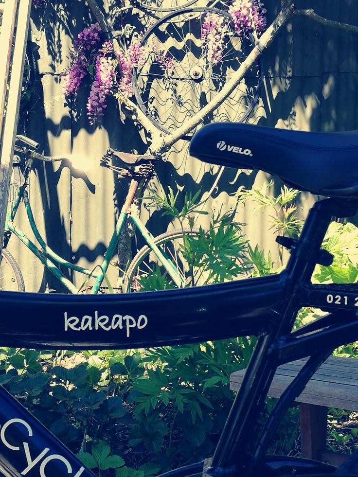 'kakapo' in front of the ole green bike.