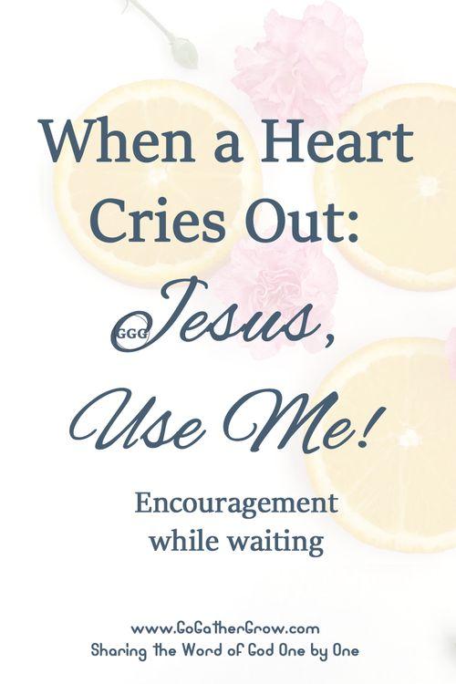 Ministry | Women's Ministry | Servant's Heart | Blogger